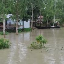 Salim working in Roumari